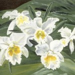 """White Orchids""  Acrylic by Merna Joan Watta"
