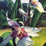"""""""Glacier Green Orchid""""  watercolor by Carolyn Lancaster"""