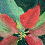 """Poinsettia Closeup""  watercolor by Julie McCue"