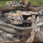 """Beach Cats""  oil by Norma Watt"