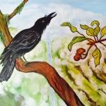 Dinsman Alala Crow