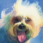 """Madamme Clicquot Maltese"" watercolor by Carolyn Lancaster"
